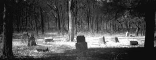 Una foto del cimitero di Bachelor Grove scattata all'infrarosso